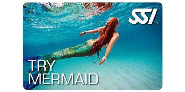 mermaid-testbild